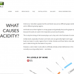 What causes acidity in wine