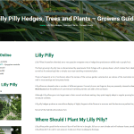 Lilly pilly plant guide