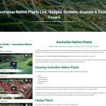 Australian native plants guide